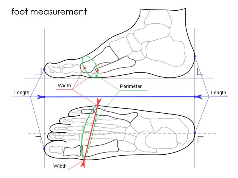 How To Tell If Shoes Are Too Big - Difference Measurement width and length