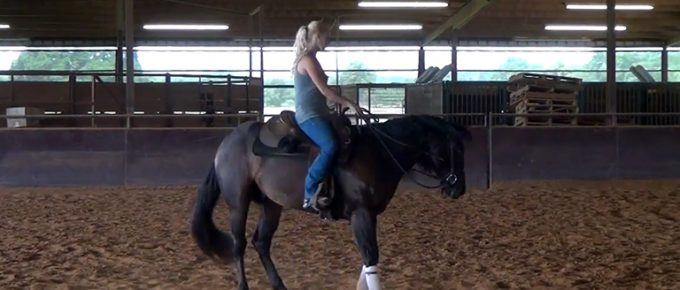 Are Doc Martens Good for Horse Riding FI